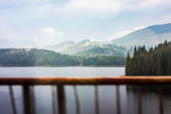 scenic-view-of-lake-and-foggy-forest-seen-through-car-window-picjumbo-com.jpg