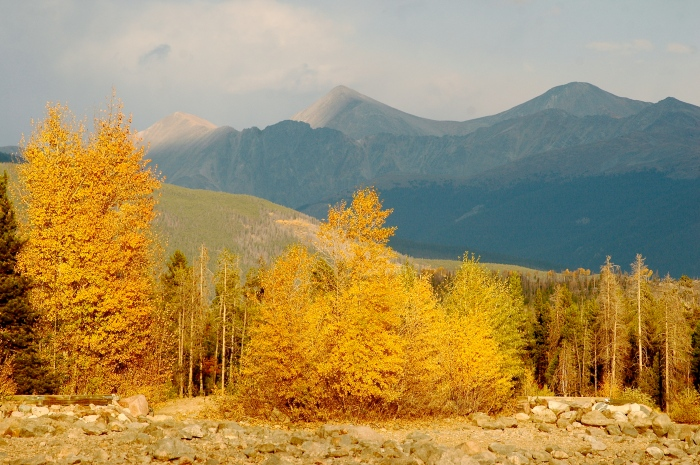 stockvault-fall-foliage-with-mountains158536.jpg